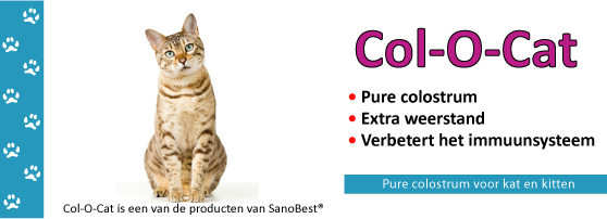 Col-o-Cat colostrum voor katten en kittens
